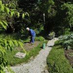 Na Vrhu Jedne Skrivene Ulice Smjestio Se Botanicki Vrt
